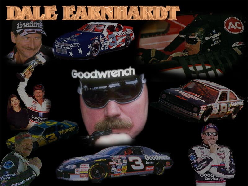Dale Earnhardt collage